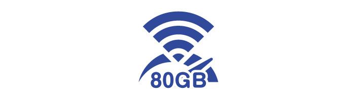 転送量 / 日 80GB
